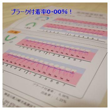 Pc230793mojiwaku