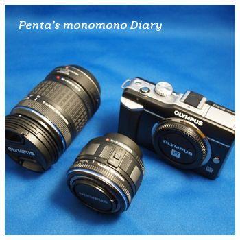 P3071561mojiwaku